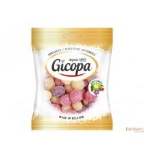 Mélange de bonbons citriques fruités - Gicopa - 24 x 100g