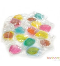 Coquillages Roc/Roudoudou 12gr.
