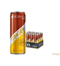 Red Bull Ginger ale bio - 25Cl