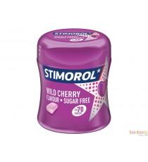 Stimorol bottle spearmint - 70 chewing gum à la menthe pour une haleine fraîche
